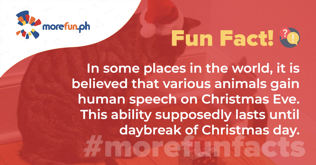 More Fun Facts! Christmas Edition Day 18 (12-18)